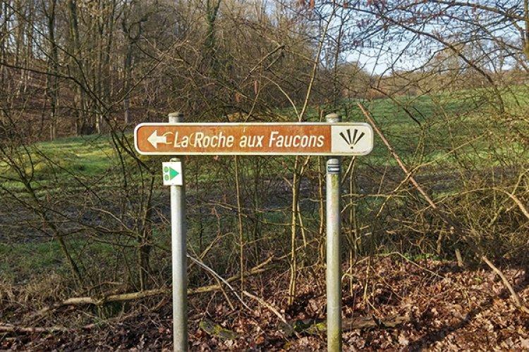 Côte de Roche-aux-Faucons